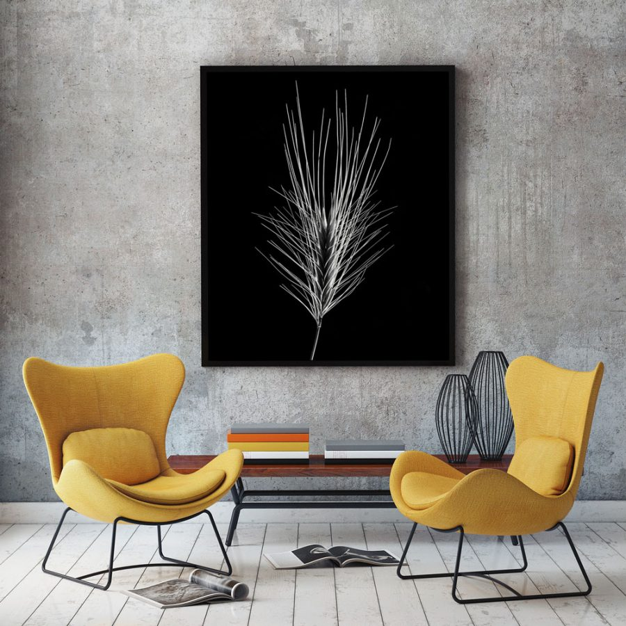 majestic-corn-studio-black-white-mock-up
