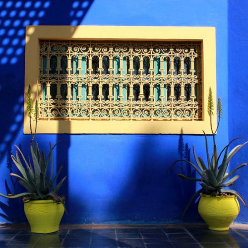 jardin-majorelle-marrakech-maroc-fine-art-print